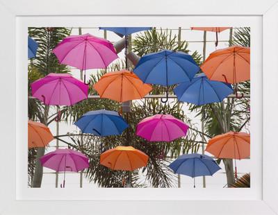 Color Canopy Art Print