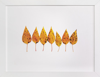 Spotted Leaves Art Print