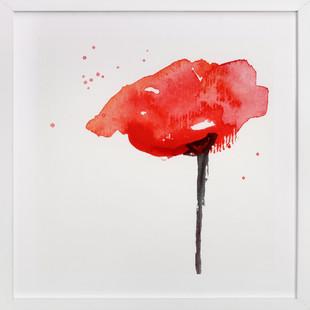 Lone Poppy Art Print