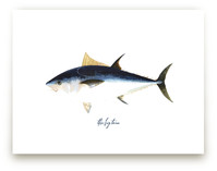 The Big Tuna by Pad and Paper