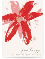 Painted Poinsettia