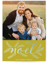 organic noel