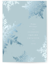 Dusted Snowflakes by Robert and Stella