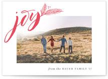 Season for Joy