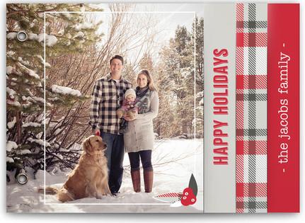 Plaid Holiday Holiday Minibooks