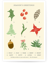 Vintage Holiday Botanicals