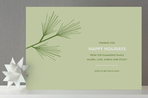 Pine Branch Holiday Cards
