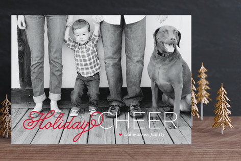 Christmas Cheer New Year Photo Cards