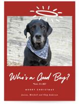 Good Boy by J. Dario Design Co.