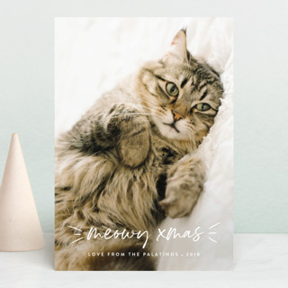 Meowy Holiday Postcards