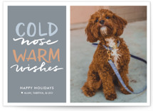 Cold Nose, Warm Wishes by Laura Condouris