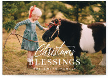 sending christmas bless... by Laura Hamm