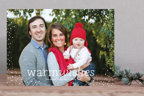 Snow Flurry Holiday Photo Cards