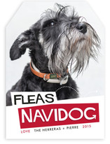 Fleas Navidog Holiday Photo Cards