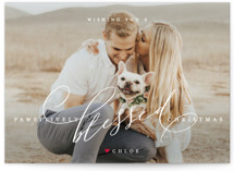 pawsitively blessed by Guess What Design Studio