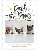Deck The Paws