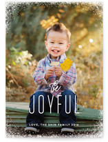 Snow Dipped Holiday Photo Cards