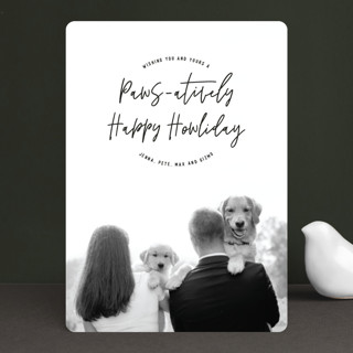 Paws-atively Happy Howliday Holiday Photo Cards