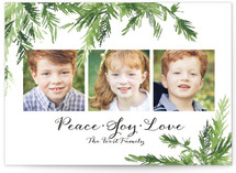 In the Pines by Peter Loves Jane