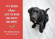 Chew Holiday Photo Cards