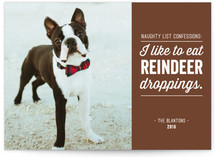 Reindeer Droppings Holiday Photo Cards