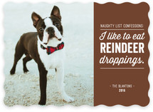 Reindeer Droppings