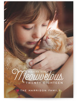 Meowvelous Holiday by guess what?