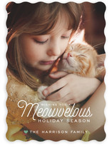 Meowvelous Holiday