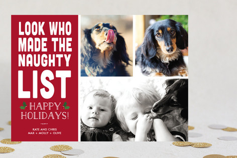 Naughty Animals Holiday Photo Cards