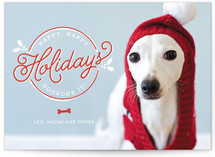 Doggone It Holiday Photo Cards