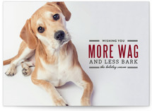 More Wag Less Bark Holiday Photo Cards