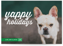 Yappy Holidays