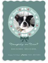 Doggy Nice List