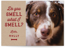 Do You Smell? by Laura Bolter Design