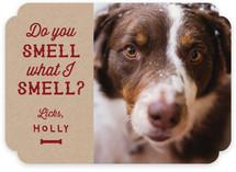 Do You Smell?