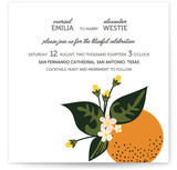 Citrus Crush Wedding Invitations