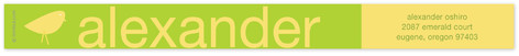Lime and Cloud Skinnywrap Address Labels