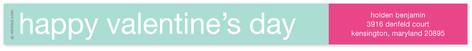 Mint and Fuchsia Skinnywrap Address Labels