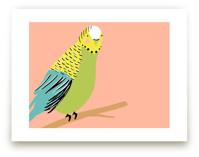Sweet Parakeet by merry mack creative