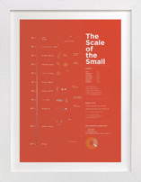 Scale of the Small