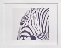 Hello Zebra!