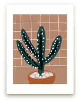 cactus plant by Cass Loh
