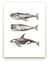 Three Stacked Whales by Two if by Sea Studios