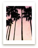 Palm trees & pink skies