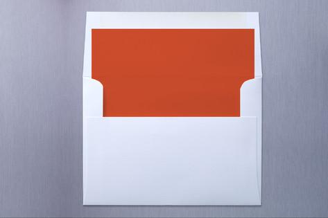 Coral Slip-In Envelope Liners
