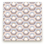 Divided Hexagons by Amber Barkley