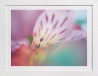 A Sea of Color  Art Print