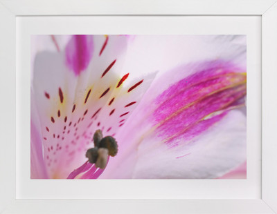 Flower10  Art Print