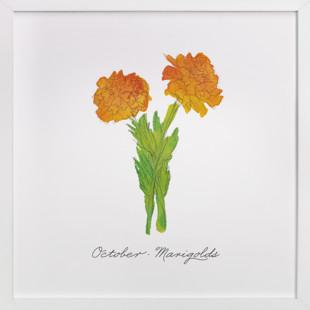 October Marigold  Art Print