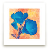 Blue Poppies by Debb W